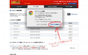 domain_onamae03