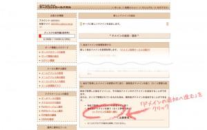 subdomain_sakura05